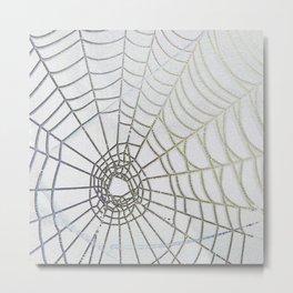 Dew Drop Spider Web Metal Print
