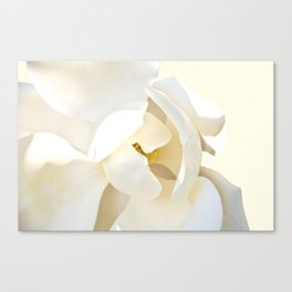 Tranquille Canvas Print