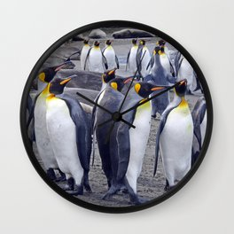 King Penguin Huddle Wall Clock
