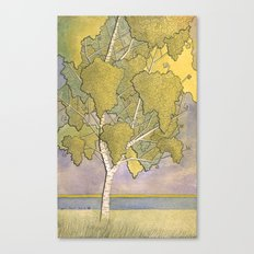 Birch 1 Canvas Print