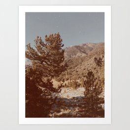 Forest Falls Art Print