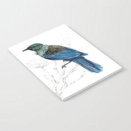 Tui, New Zealand native bird Notebook
