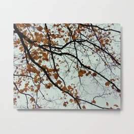 meticulous maple veins Metal Print