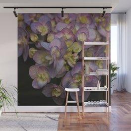 Light Purple Hydrangeas Wall Mural