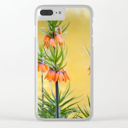 Orange lily flowers Fritillaria imperialis Clear iPhone Case