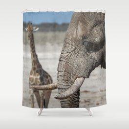 Animal Kingdom 6 Shower Curtain