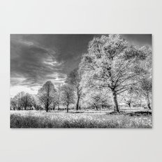 The Summer  English Field Infared Canvas Print