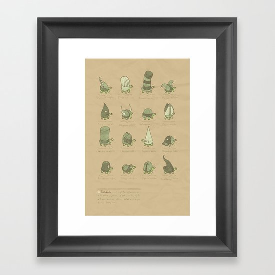 A Study of Turtles Framed Art Print