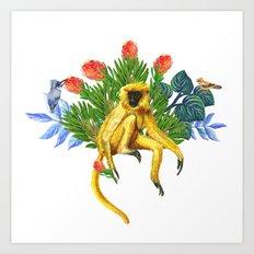 The golden langur Art Print