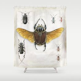 The Vintage Beetles Collection Shower Curtain
