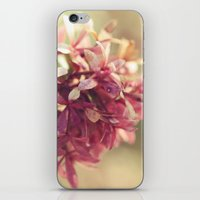 blush iPhone & iPod Skins featuring Blush by BURNEDINTOMYHE∆RT♥
