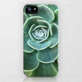 Diamond Succulent iPhone Case