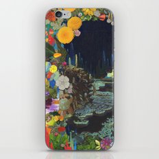 Cave Garden II iPhone & iPod Skin