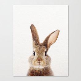Baby Rabbit, Baby Animals Art Print By Synplus Canvas Print