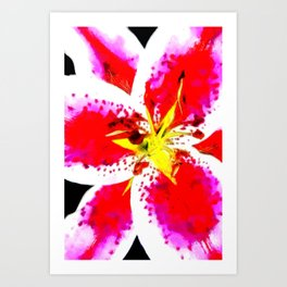 Flower - Yellow and Red Art Print