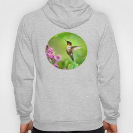 Hummingbirds Welcome Hoody