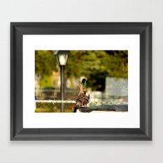 I swear there was water here.... Framed Art Print