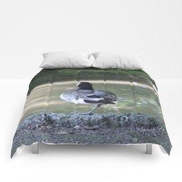 Acrobat Comforters