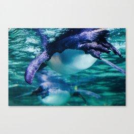 Dancing Penguins Pt.3 Canvas Print