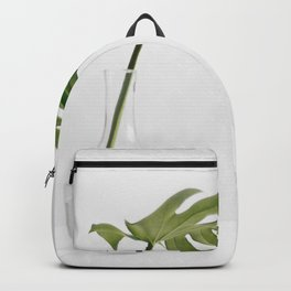 Single Monstera Leaf In Clear Glass Zen Minimalist House Plant Photo Backpack