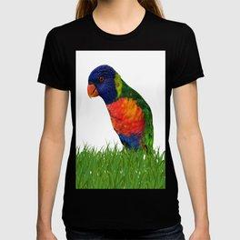 Lorikeet Bird Art T-shirt