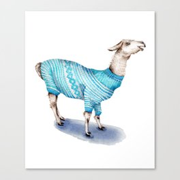Llama in a Blue Sweater Canvas Print