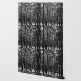 Snowy forest Wallpaper