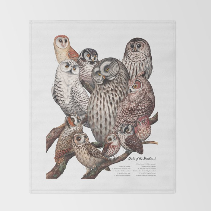 Owls of the Northeast Throw Blanket