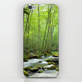 Spring Forest Stream iPhone Skin