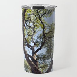 Live Oaks Travel Mug