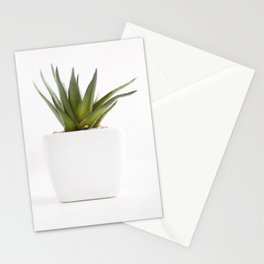 Succulent for minimalists Stationery Cards
