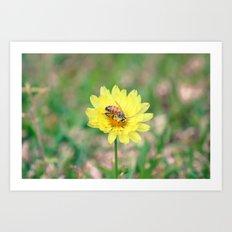 Nature In April - 2 Art Print