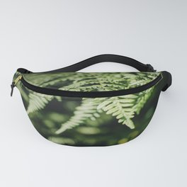 Fern is dancing in the light I Plant of the forest I Photography Fanny Pack