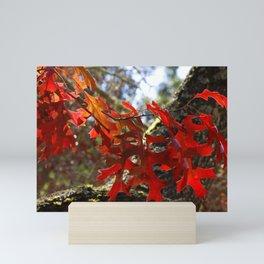 A Touch of Autumn Mini Art Print
