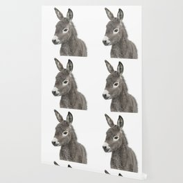 Baby Donkey Wallpaper