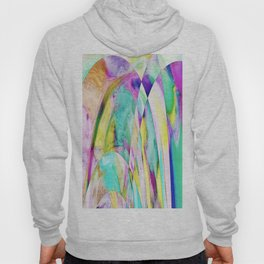 276 - Abstract Colour Design Hoody
