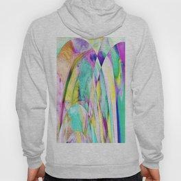 276 - Abstract Colour Design Hoody