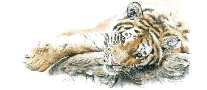 Siberian Tiger Lying Down Coffee Mug