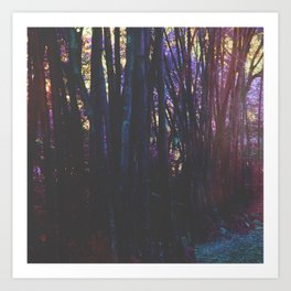 Twilight in Wonderland Art Print