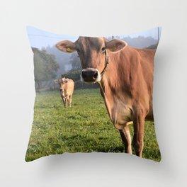 Cows in a Field Throw Pillow