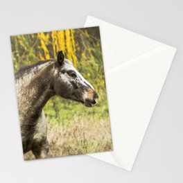 Horse Before an Autumn Willow Stationery Cards