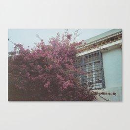 Tunis Canvas Print