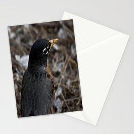 a model bird Stationery Cards