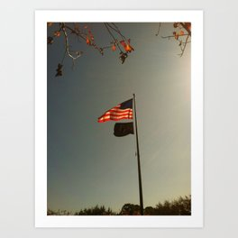 Freedom Flag Art Print