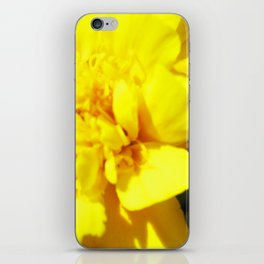 Rippling iPhone Skin