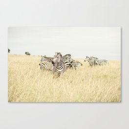 leader::kenya Canvas Print