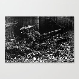 Forest Dark III Canvas Print