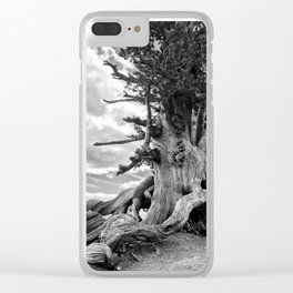 Wally Waldron Tree - Mt. Baden Powell Clear iPhone Case