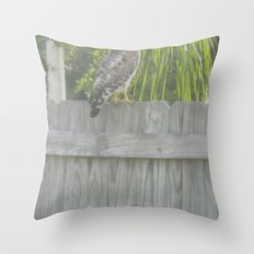 Falcon gazing Throw Pillow