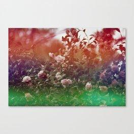 Flowers in Film, III Canvas Print